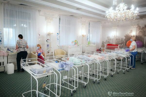 Blick-Artikel aus der Schweiz: 46 Babys in ukrainischem Hotel gestrandet